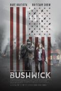 Bushwick Subtitles Book Cover