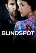 Blindspot Season 3 Episodes 17 subtitles Book Cover
