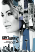 Greys Anatomy season 14 episode 9 subtitle Book Cover