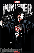 The Punisher Season 1 Episode 10 (Virtue of the Vicious) Book Cover