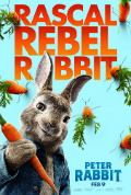 Peter Rabbit Subtitles Book Cover