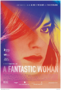 A Fantastic Woman Subtitles Book Cover