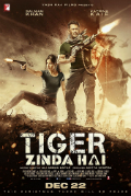 Tiger Zinda Hai Subtitles Book Cover